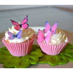 edible butterflies cake and cupcake toppers decoration